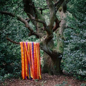 James Holden & The Animal Spirits - The Animal Spirits - Border Community - 50 BCLP