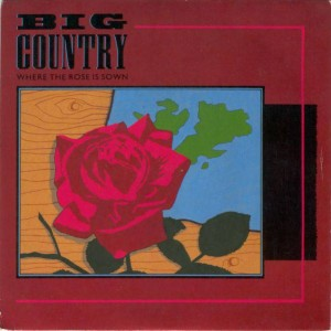 Big Country - Where The Rose Is Sown - Mercury - MER 185