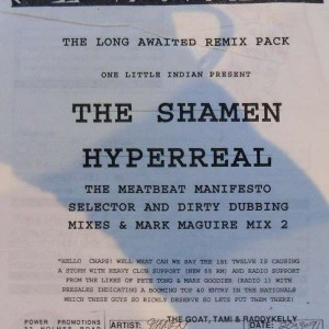 The Shamen - Hyperreal (Remix) - One Little Indian - 48 TP 12 L