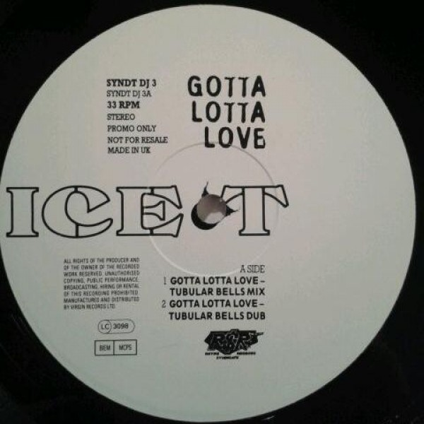 Ice-T - Gotta Lotta Love - Rhyme $yndicate Records - SYNDTDJ 3